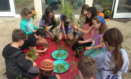 The Wow Metric of Success: Jewish Life Blooms on the Farm