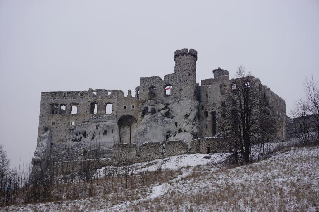 Zamek Ogrodziniec