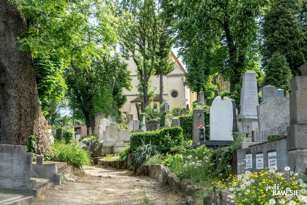 Sighisoara - cmentarz na wzgórzu
