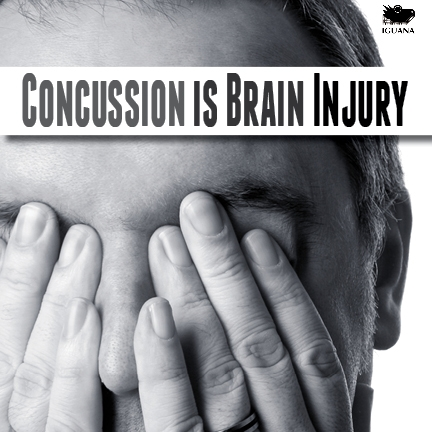 Concussion Is Brain Injury 2012 original version cover Shireen Jeejeebhoy
