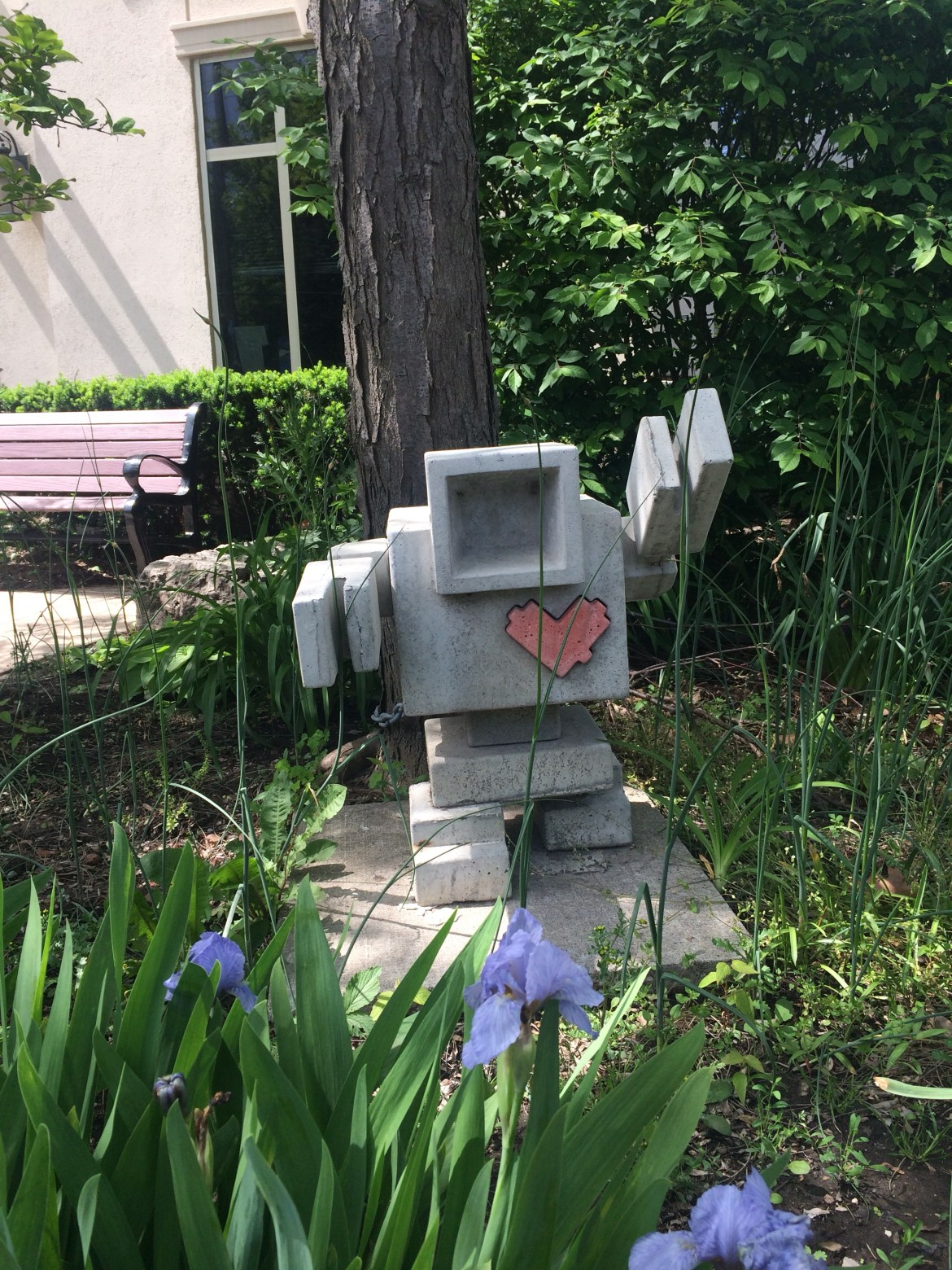 Love bot at CHIRS, a place for people with head injury