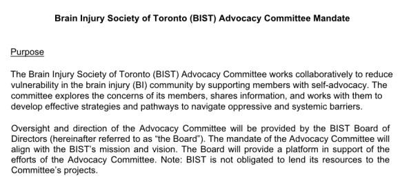 BIST advocacy committee mandate purpose