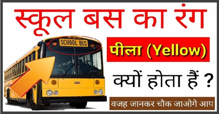 Secret Behind Yellow Color in School Buses
