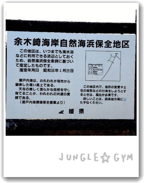 JAM_8937