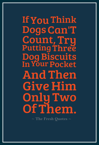 If-You-Think-Dogs-CanT-Count-Try-Putting-Three-Dog-Biscuits-In-Your-Pocket-And-Then-Give-Him-Only-Two-Of-Them.-»-Phil-Pastoret-341x500
