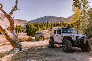 Jeep Tour Colorado Native Jeeps About Us