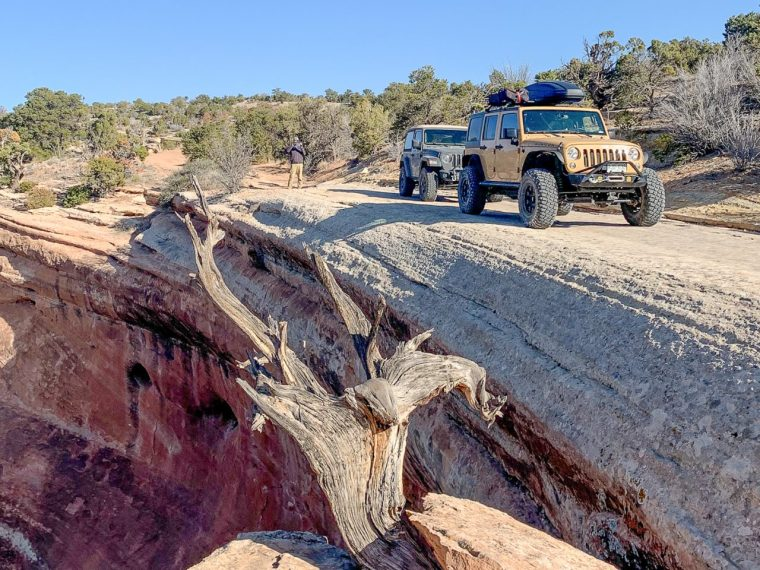 Jeep Tours Colorado by Native Jeeps Tabeguache Trail