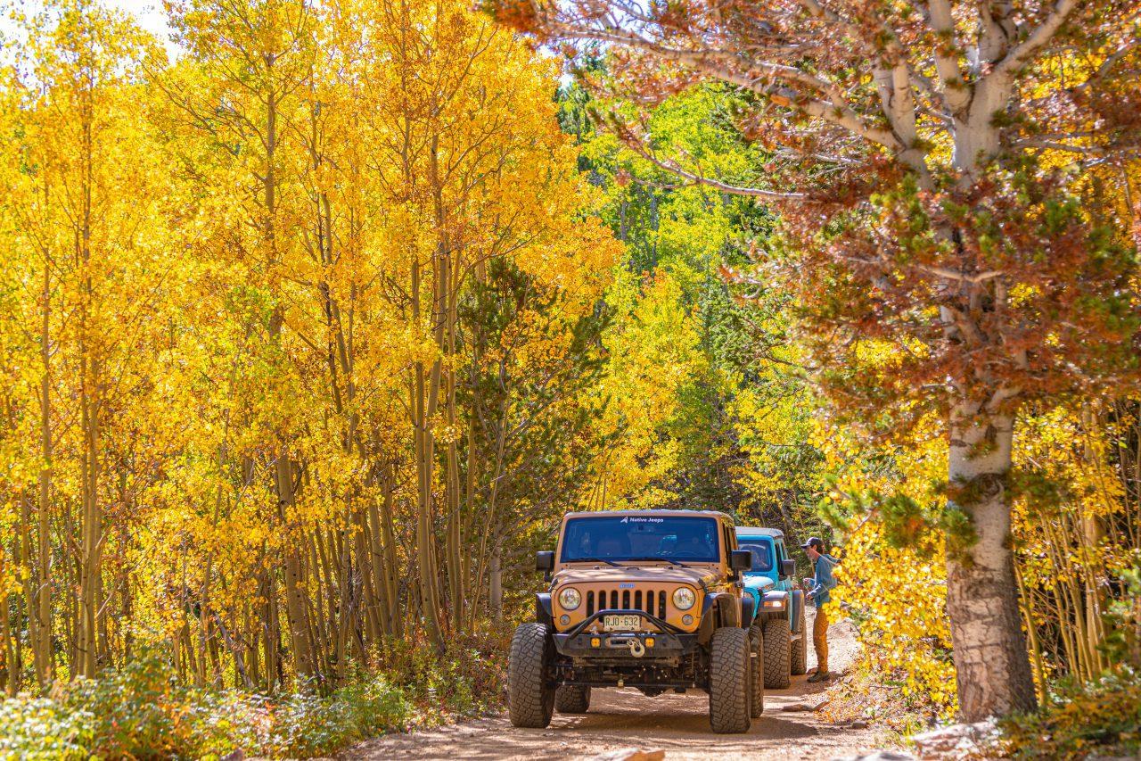 Native Jeeps Fall in Colorado