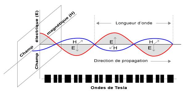 Les ondes scalaires Longitudinales