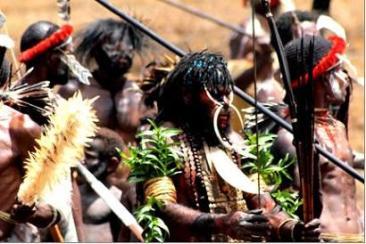 dani tribe baliem valley
