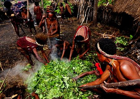 Dani tribe pig feast in baliem valley