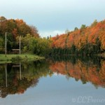Fall foliage in Maine by Lori Prosser-Easton, ME