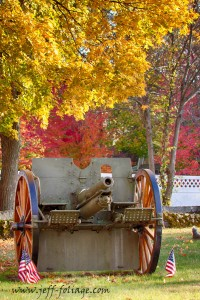 Fall foliage over a cannon in a vetrans cemetery