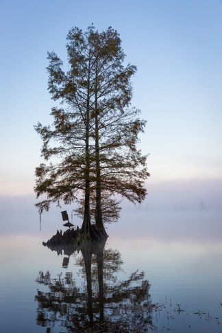 houston-photographer-landscape-1