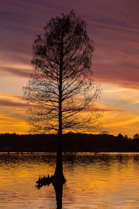 Sunset on Lake Cherokee
