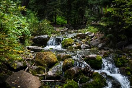 Houston Photographer – Landscape & Nature