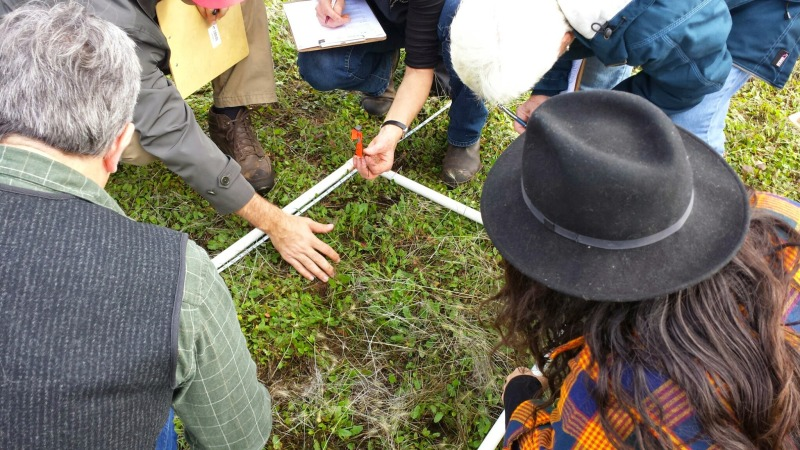 holistic management, Savory Institute, biological monitoring