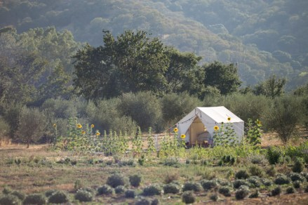 Soul Food Farm, holistic management workshop