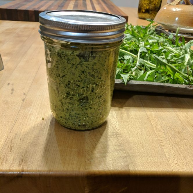 We made dandelion pesto using greens. It is best to pick greens when they are young, and growing in shady areas. Greens growing in the direct sun can be quite bitter.
