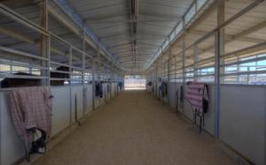 Barn for sale cave creek arizona,85331 barn for sale arizona