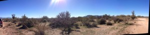 horse ranch arizona with panoramic views,rio verde foothills,owner financed land for sale scottsdale
