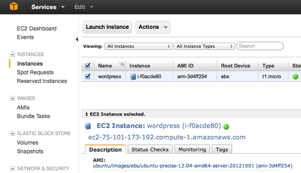 Your New Instance in the AWS Console