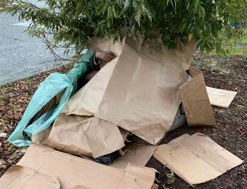 seattle homeless amazon