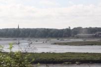 Tidal marsh in East Anglia.