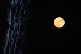 full-moon-nite2-2