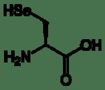 120px_L_selenocysteine_2D_skeletal1