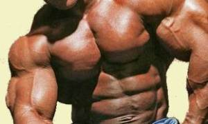 BodyBuilderClomidClomiphenetestosteroneFSHLH2