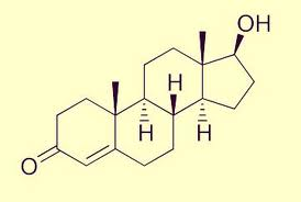 Low_Testosterone_jeffrey_dach