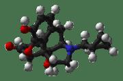 Low Dose Naltrexone LDN Part 2
