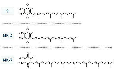 Vitamin_K_structures_MK4_MK7_jeffrey_dach_MD