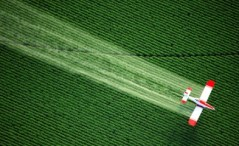 Glyphosate Spraying Fields