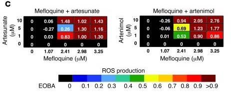 Fig2C Sukhai Mefloquin Artemisinin Synergy ROS