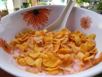 Corn_Flakes_GMO_Heidi_Heitkamp_Bt_Toxin_Cry_A1