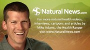 Natural News Black Listed by Google Search Engine