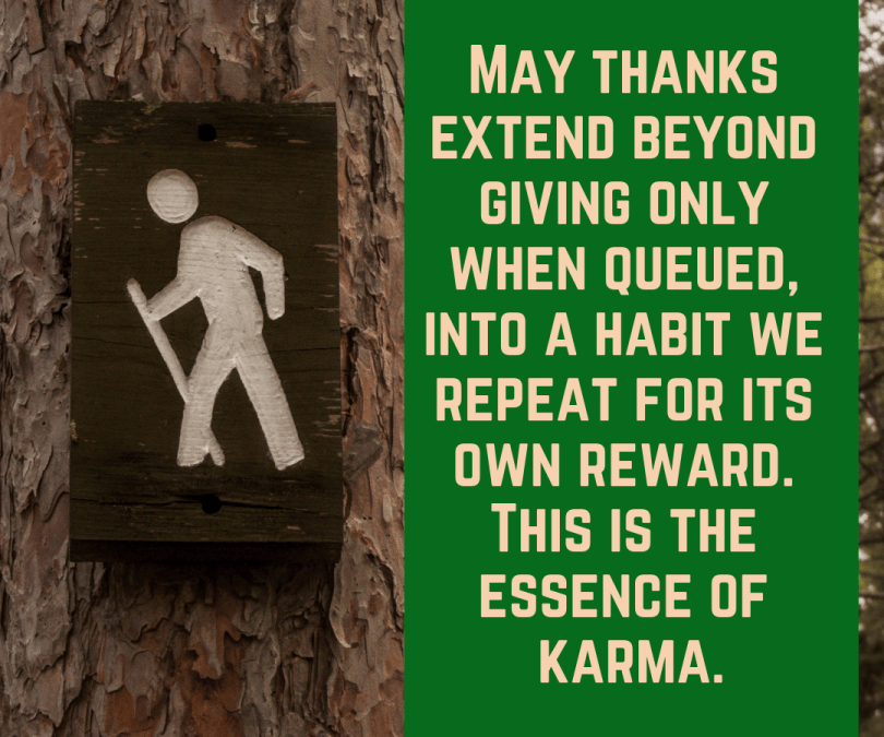 The Essence of Karma