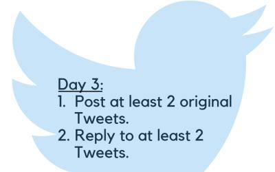 Twitter Challenge: Day 3. Posting!