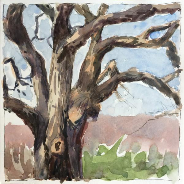 Old Tree   Jeffrey Smith Art