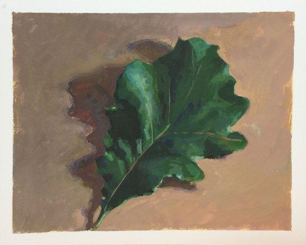 Oak Leaf   Gouache   Jeffrey Smith Art
