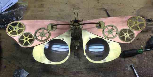 31 wings open 2