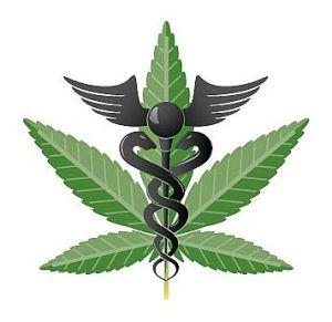 MedicalMarijuana_photo