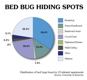 bed-bugs-chart