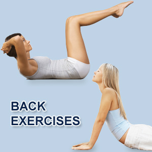 lower-back-exercise