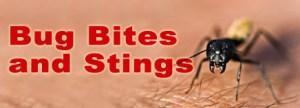 Bug_bites_stings