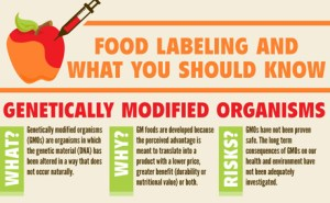 GMO-Infographic