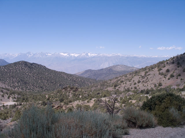 Sierra crest from near the Ancient Bristlecone Pine Forest