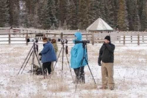Jeff Wendorff's Winter Wildlife Workshop Photographers
